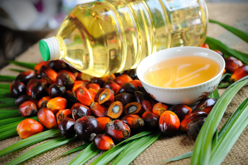 Palm oil: A high quality, sustainable ingredient